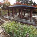中島公園30