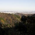 Photos: 稲荷山山頂から(1)