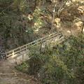 Photos: 3号路は橋が多い
