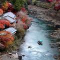 写真: トロッコ列車と保津川
