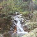 Photos: こうち滝への道 (4)