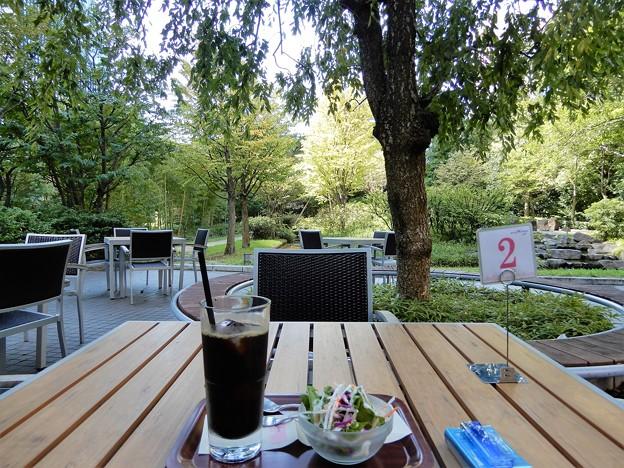 里山のカフェテラス、ウイラードエクスプレスにて