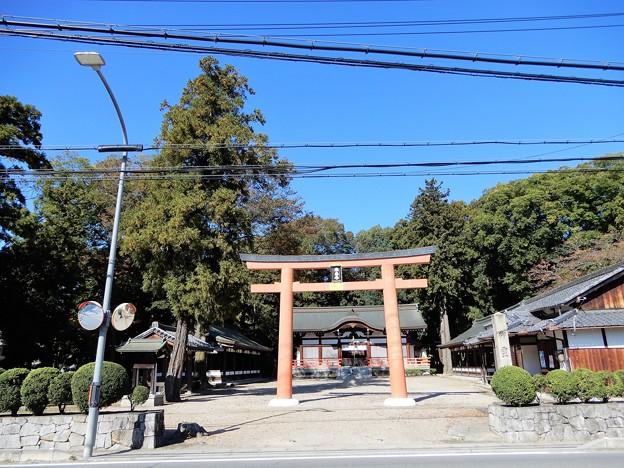06御霊神社 (1)