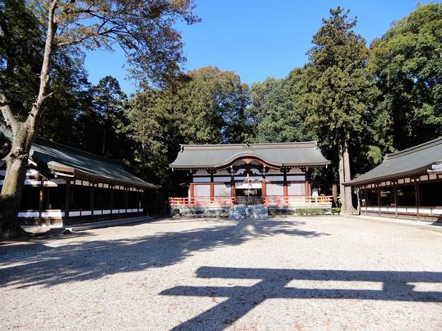 06御霊神社 (2)