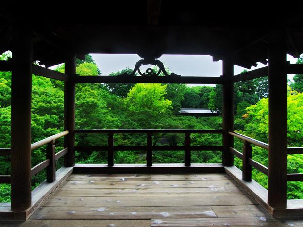 写真: 夏の東福寺(人なし)