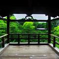 夏の東福寺(人なし)