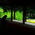 夏の青蓮院