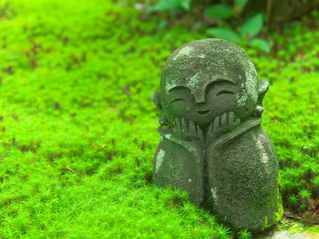 写真: 圓光寺の石仏