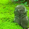 Photos: 圓光寺の石仏