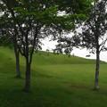 写真: 竹葉公園