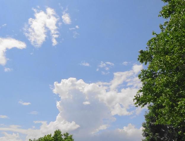 西の空から雲が