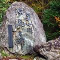 写真: 四万十源流点の石碑