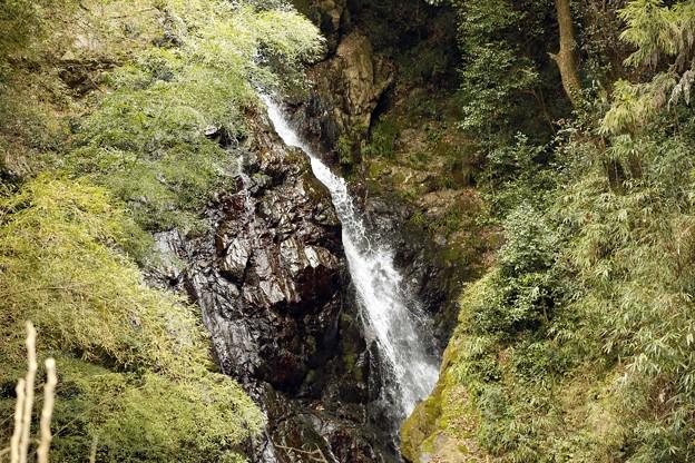 金剛滝・瀬田川の流れ
