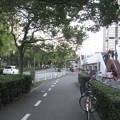 兵庫県芦屋市のグルメシティ芦屋浜店東側の白ポストと周囲。団地の谷間の大型店の外。(2014年)