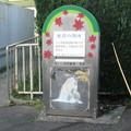 三重県名張市の近鉄赤目口駅前のいわゆる白ポスト、ほぼ正面。(2014年)