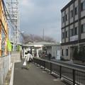 写真: 春木