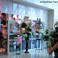 Photos: 病院内のお花屋さん
