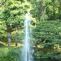 写真: 噴水と緑