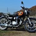 kawasaki・W800:田園の紅葉をバックに・・