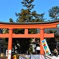 写真: 快晴の東伏見稲荷神社