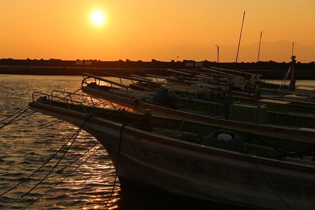 夕日に輝く漁船たち