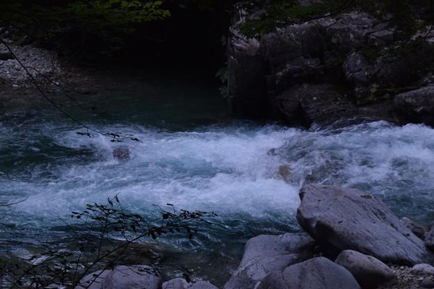 Photos: DSC_0148