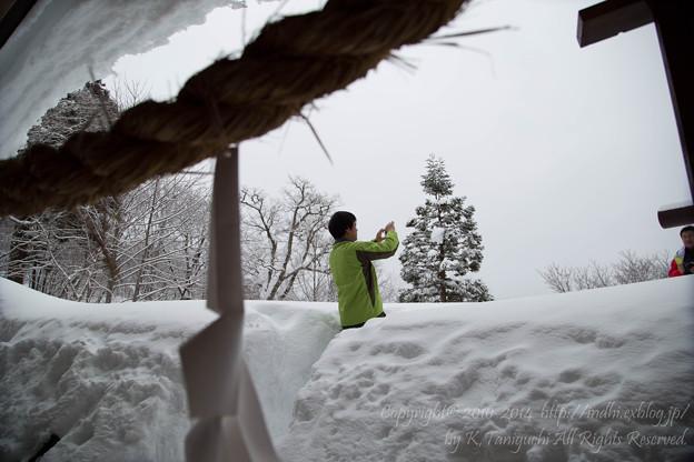 写真: 雪いっぱい