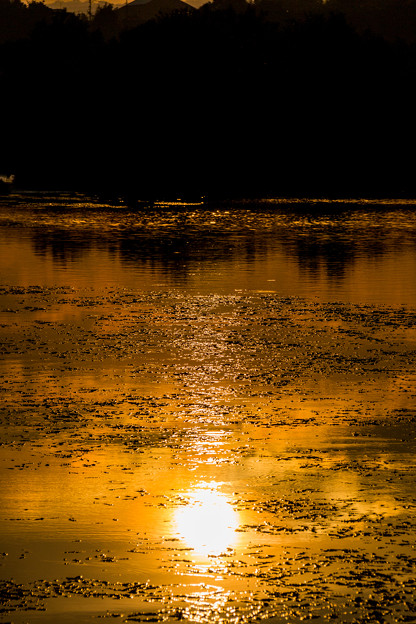 川面の夕日
