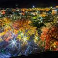 写真: 鶴山公園