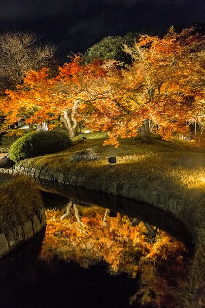 後楽園 幻想庭園