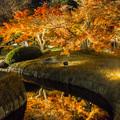 写真: 後楽園 幻想庭園