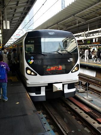 E257系(新宿駅)1