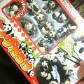 Photos: 何千万円もしないパンダ