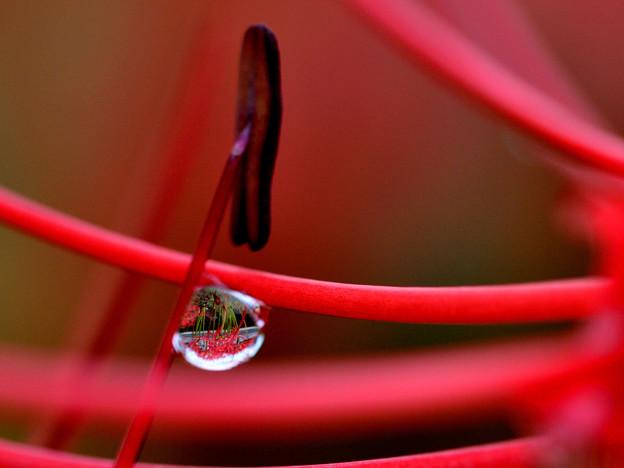 写真: 雨模様