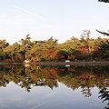 修法ヶ原池のパノラマ