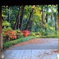 Photos: 山門にて
