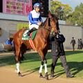 Photos: キャトルフィーユとD.バルジュー騎手