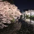 Photos: 水面と桜