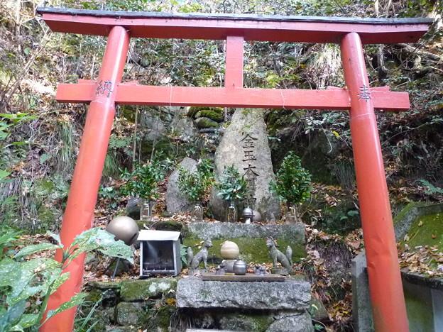 フォト蔵にようこそ 落葉タマる金玉大明神 Kintama Daimyojin God in Mount Rokkō