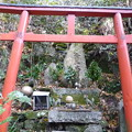 Photos: フォト蔵にようこそ 落葉タマる金玉大明神 Kintama Daimyojin God in Mount Rokkō