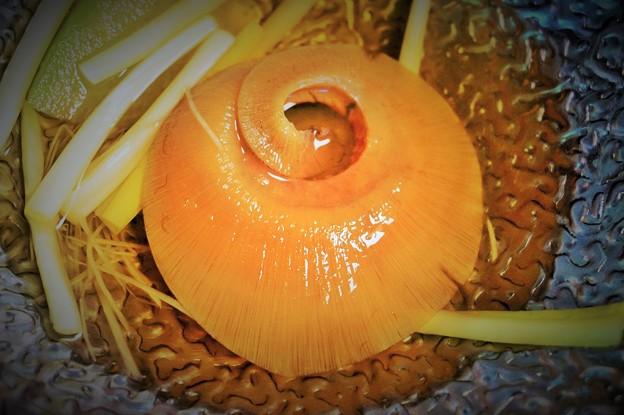 写真: フカヒレと冬瓜  Shark fin soup
