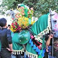 写真: イランの緑馬 Decorated horse,Iran