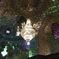 写真: 煌めく星:聖廟の鏡モザイク張り~シラーズ Mirror mosaics