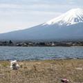 写真: 大きな富士山