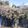 写真: 滝と富士山