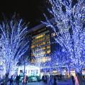 Photos: 博多駅