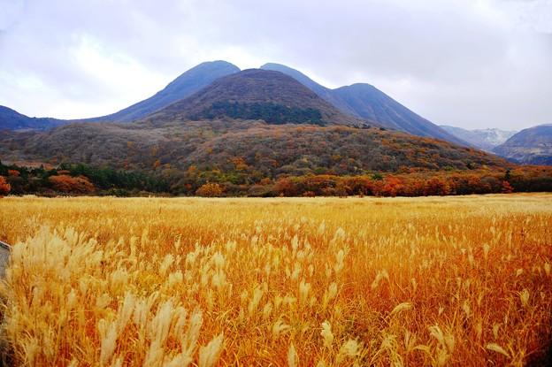 タデ原湿原より三俣山を望む
