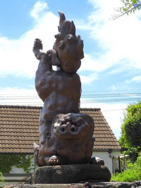 写真: 逆立ち~狛犬(吽形)