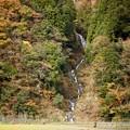 Photos: 蓮如の滝