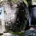Photos: 2017/07/16・・・天城越えNo.01